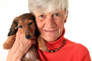 Seniors Embrace Estate Planning for Pets – Whiteboard Video